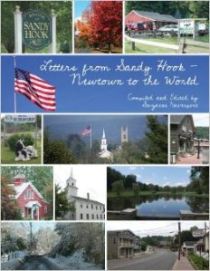 Book Cover for Letters from Sandy Hook - Newtown to the World