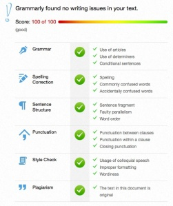 Grammarly Results